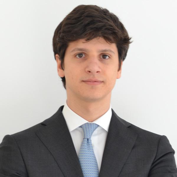 Nicolò Matteo Bonaldo